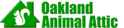 Oakland Animal Attic